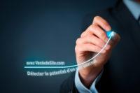 potentiel site internet à vendre